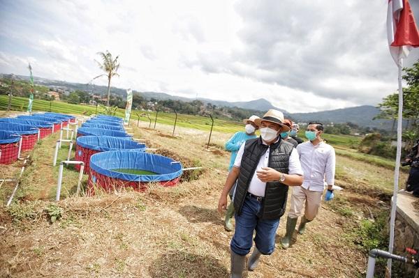 Wahhh, Kota Bandung Kini Punya Kawasan Pertanian Terpadu